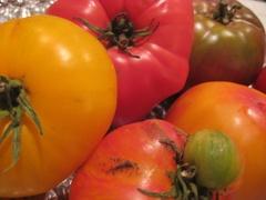 Heirloom_tomato
