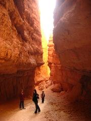 Navajo_trail